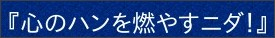 http://www7a.biglobe.ne.jp/~tsukiyori/himorogi/himorogi21.html
