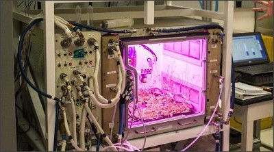 http://i.gzn.jp/img/2017/03/28/inside-nasa-space-farming-lab/00_m.jpg