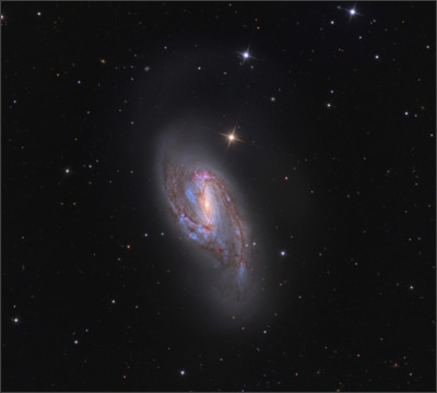 http://annesastronomynews.com/wp-content/uploads/2012/02/Messier-66-by-Adam-Block.jpg