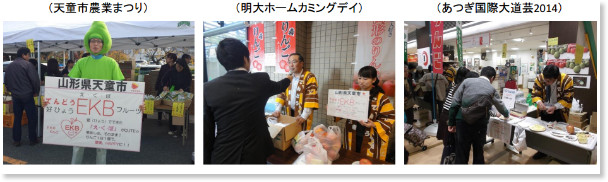 http://www.city.tendo.yamagata.jp/municipal/shesaku/2015-0121-1350.pdf