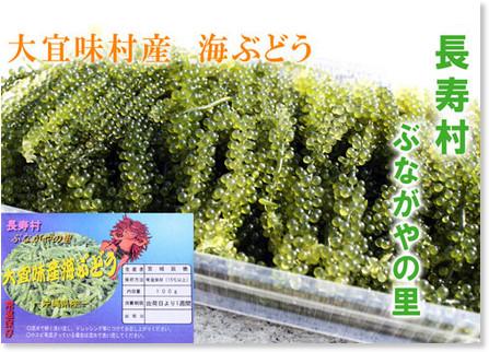 http://okifuru.com/municipality/oogimison/gift_oogimi_8.php