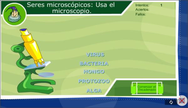 http://ares.cnice.mec.es/ciengehi/b/01/animaciones/a_fb13_03.html