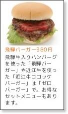 http://www.c-exis.co.jp/sapa/detail_3/051320501.html