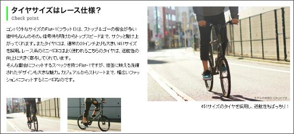 http://item.rakuten.co.jp/hakkle/cycroc-flat1/