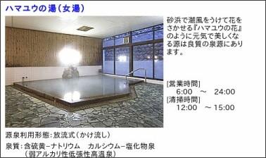 http://www.hotelurashima.co.jp/onsen/onsen11.htm
