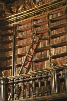 https://upload.wikimedia.org/wikipedia/commons/7/7d/Joanina_Library_-_University_of_Coimbra_-_Portugal.jpg
