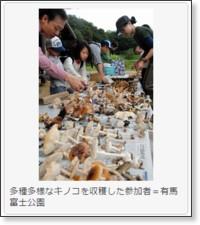 http://www.kobe-np.co.jp/news/sanda/201509/0008410633.shtml