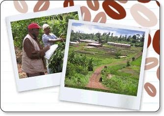 http://www.brightertomorrow.info/Ndumberi-Initiative-Homepage.htm