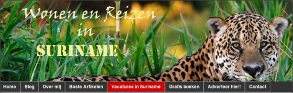 http://www.nederland-suriname.nl/vacatures-in-suriname/