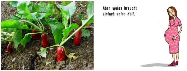 http://www.moritzverlag.de/index.php?article_id=193