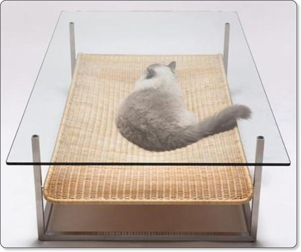 http://hamusoku.com/archives/7981312.html