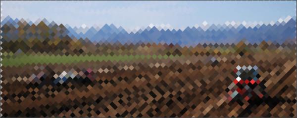 http://www.ja-memuro.or.jp/agri/index.html