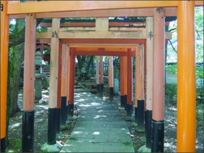 http://kyoto-tabiya.com/wp-content/uploads/P5126498.jpg