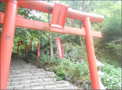 http://livedoor.blogimg.jp/nyabe0427-hsb/imgs/6/1/6188886a.jpg