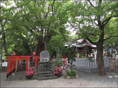 http://www.nikaidou.com/wp-content/uploads/2015/05/image4.jpg