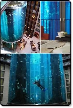 Fun Fever: Top Ten Coolest Aquariums
