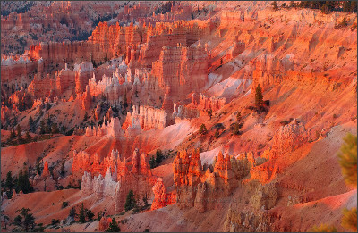 http://www.digital-images.net/Images/SW_Scenic/BryceCanyon/Landscape/Bryce_Canyon_Hoodoos_at_Sunrise_Point_0459.jpg