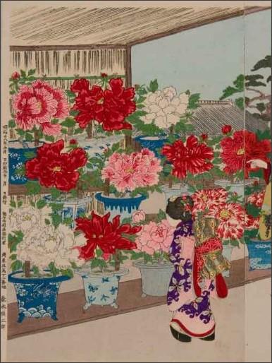 http://www.rekishijin.jp/wp-content/uploads/botanen.jpg