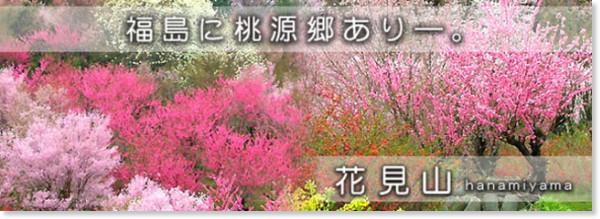 http://www.f-kankou.jp/hanamiyama.htm