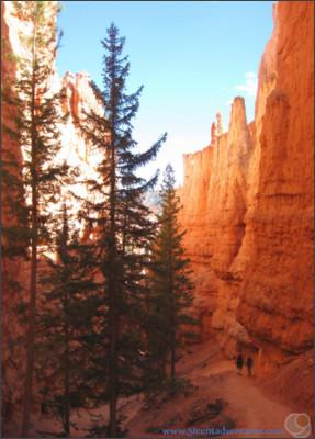 http://3.bp.blogspot.com/-2r9yJV1_ee4/U-KcFTNReAI/AAAAAAAAAnE/WPMySk_SmGA/s1600/Bryce+Canyon+-+Navajo+Loop+Trail+2.jpg