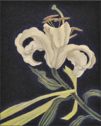 http://www.gallerycomplex.com/schedule/Hall17/image/seki.jpg