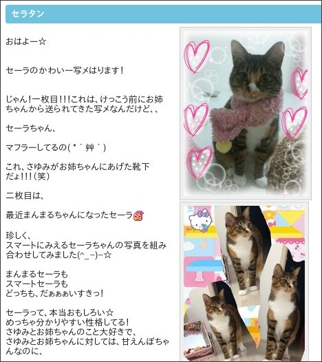 http://gree.jp/michishige_sayumi/blog/entry/640910883