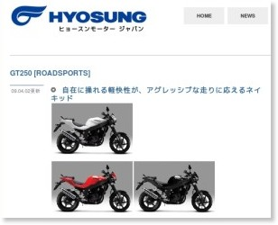 http://www.hsmc.jp/line-up/roadsports/gt250