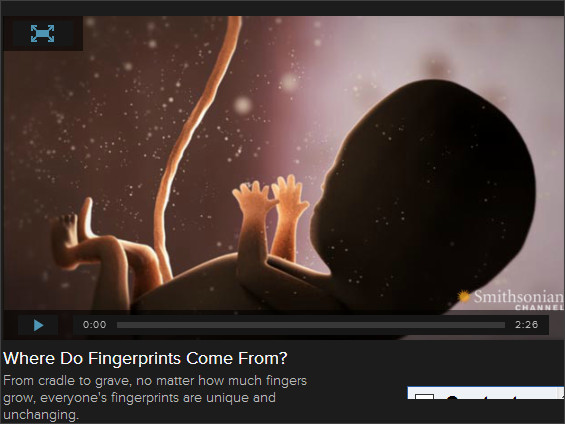 http://www.smithsonianchannel.com/site/sn/show.do?episode=141423#where-do-fingerprints-come-from