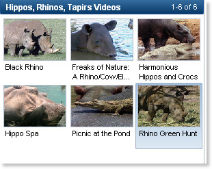 http://video.nationalgeographic.com/video/player/animals/mammals-animals/hippos-rhinos-tapirs/hippo_lickcrocodiles.html