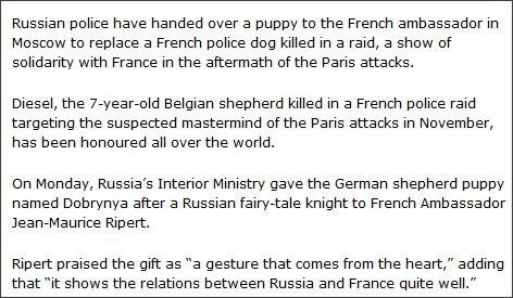 http://www.theglobeandmail.com/news/world/russia-gives-puppy-to-france-to-replace-police-dog-killed-in-raid/article27630394/
