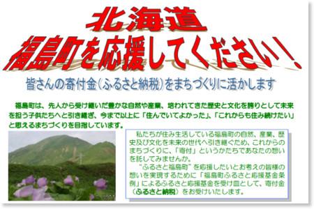 http://www.town.fukushima.hokkaido.jp/hurusatoouen/furusatonouzei-panfu2.pdf