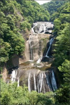 https://upload.wikimedia.org/wikipedia/commons/d/d0/Fukuroda_Falls_12.jpg