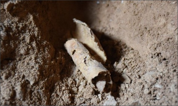 http://www.cnn.co.jp/storage/2017/02/09/6566b9340f4b69706f64bc9c87981323/remnant-of-scroll-found-in-cave.jpg
