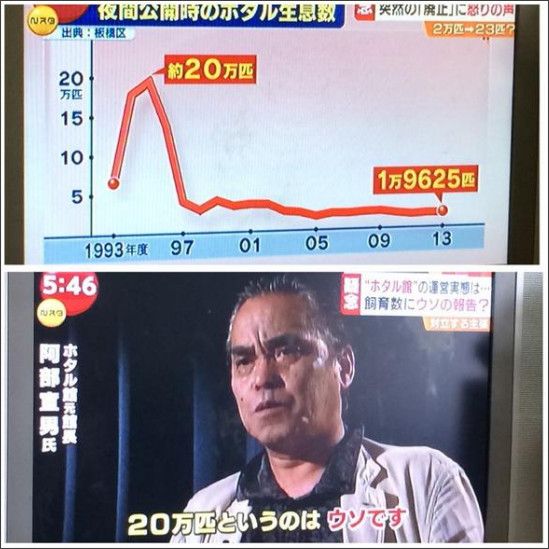 https://twitter.com/nakatsuma/status/508128139730362368