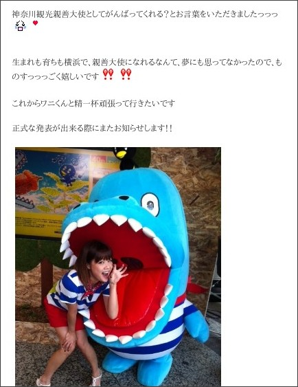 http://ameblo.jp/nigaki-risa/entry-11350407786.html