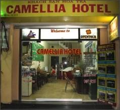 http://camelliahanoi.com/