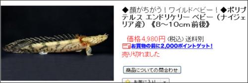 http://item.rakuten.co.jp/makkachin/10004454/