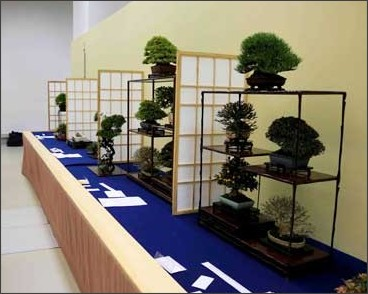 http://www.kyoto-np.co.jp/picture/2017/01/20170105103708gahu450.jpg