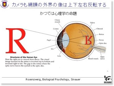 http://gc.sfc.keio.ac.jp/class/2005_14454/slides/05/26.html