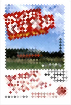 http://ecx.images-amazon.com/images/I/51kPIXM4jAL.jpg