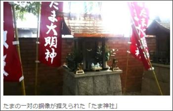 http://wbs.co.jp/news/2015/08/11/65430.html