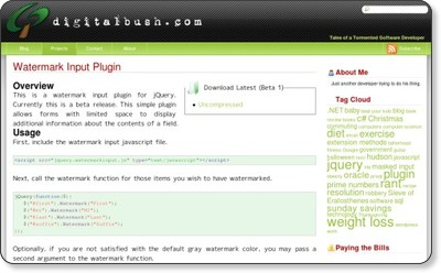 http://digitalbush.com/projects/watermark-input-plugin/