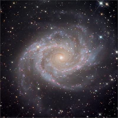 http://www.starshadows.com/_img/image/gallery/2/NGC2997_master.jpg