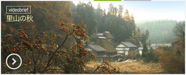 http://ourworld.unu.edu/jp/harvest-time-in-satoyama/#authordata