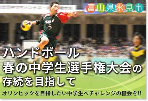 http://www.furusato-tax.jp/gcf/13/