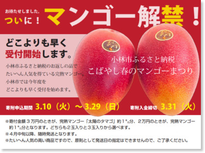 http://cms.city.kobayashi.lg.jp/tempimg/1411111627222015031109292119f.pdf