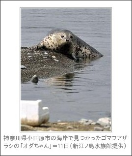 http://sankei.jp.msn.com/life/news/130819/trd13081912390004-n1.htm