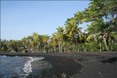 https://upload.wikimedia.org/wikipedia/commons/d/da/Punaluu_Black_Sand_Beach,_Hawaii,_USA8.jpg