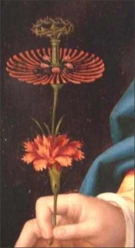 http://www.flwildflowers.com/clues/