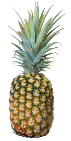 http://www.northshoregrocery.com/assets/images/Pineapple.jpg